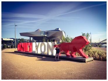 la-sculpture-onlylyon-au-musee-des-confluences